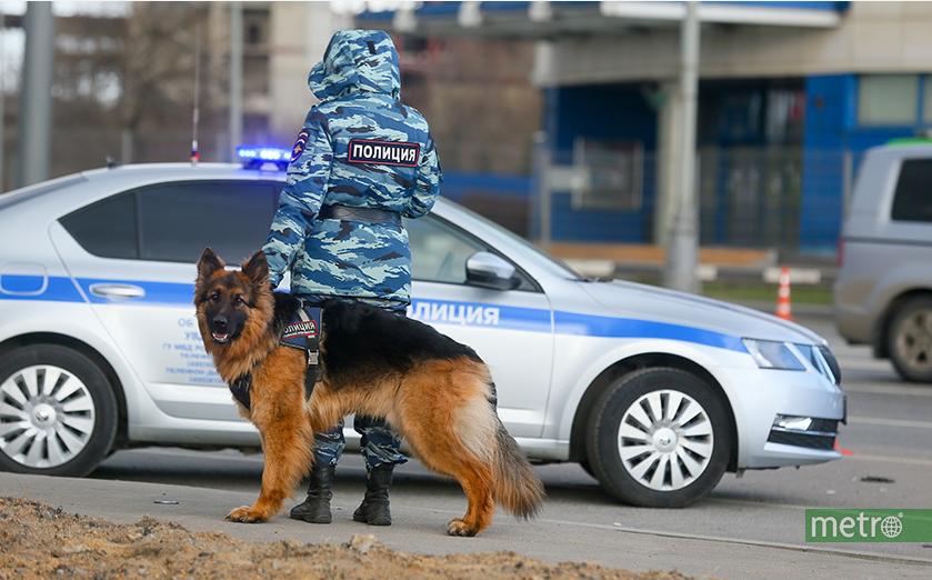 На место происшествия выехали полицейские. Фото Василий Кузьмичёнок