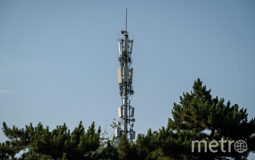 Вышка 5G. Фото AFP