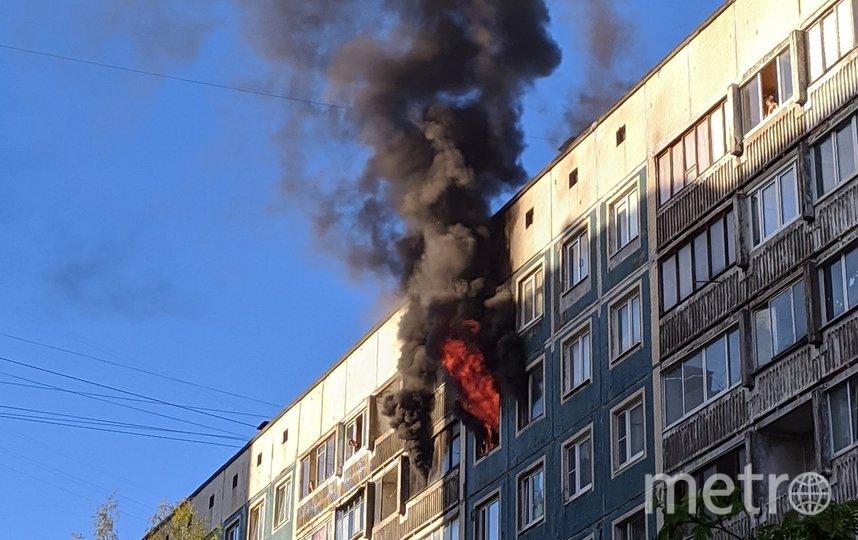 Пожар на Северном. Фото ДТП и ЧП / Санкт-Петербург /vk.com/spb_today, vk.com