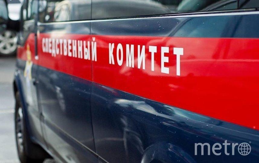 Архивное фото. Фото СК РФ по Ленинградской области, vk.com