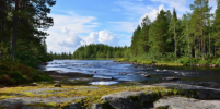 Объявлена дата снятия ограничений для внутреннего туризма в России