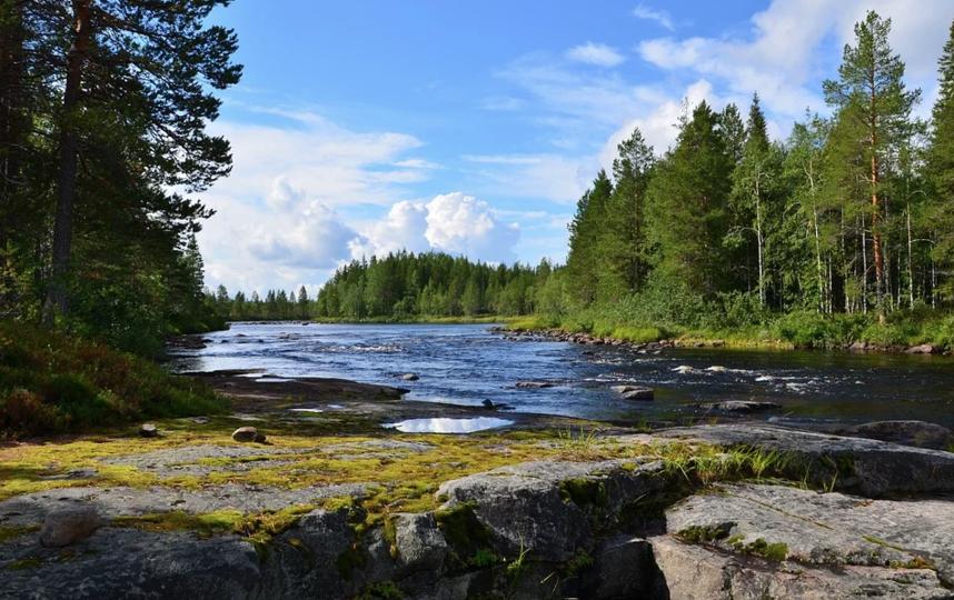 Открытие внутреннего туризма в России начнётся с 1 июня. Фото Pixabay