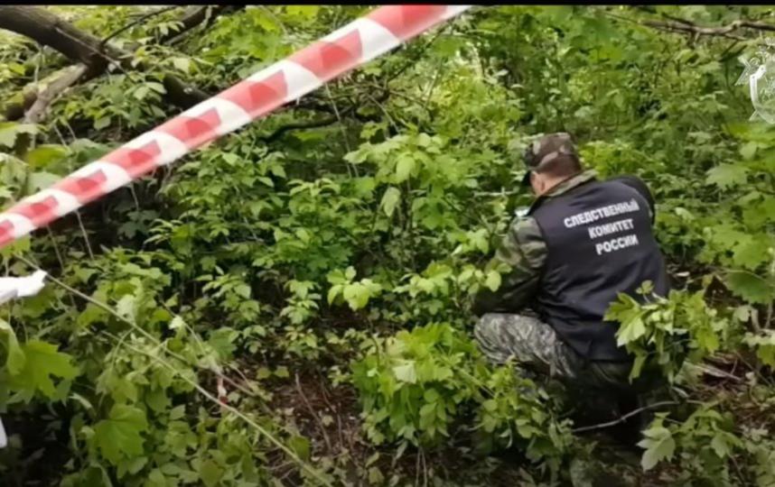 Следком показал видео из лесопарка, где было найдено тело девочки-подростка. Фото Скриншот Youtube
