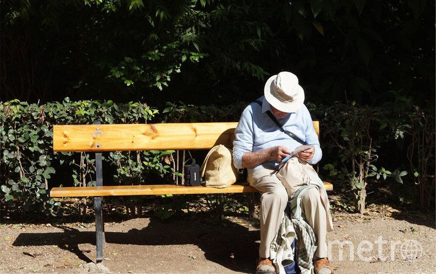 Прогулки и свежий воздух очень важны в любом возрасте, напоминает Мария Гартман, геронтопсихиатр и кандидат медицинских наук. Фото Pixabay