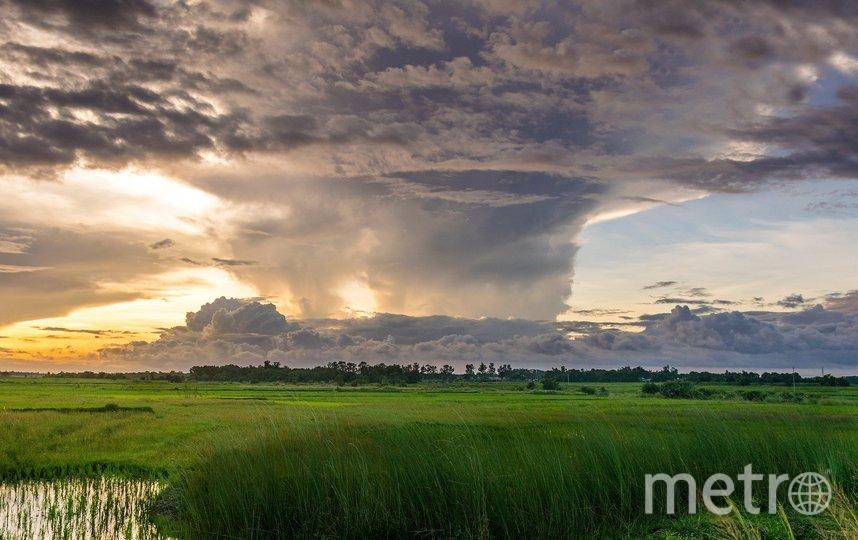 """Летом погода """"порадует"""" россиян ураганами и смерчами. Фото pixabay.com"""