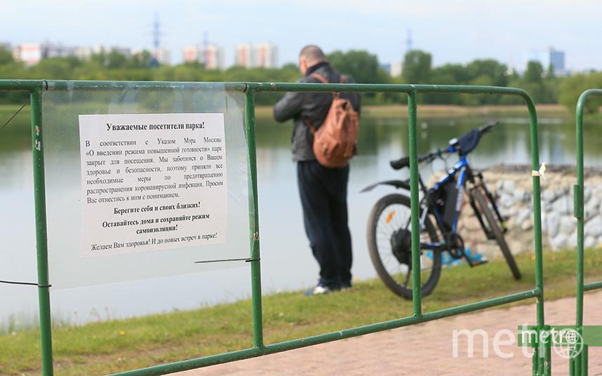 Несмотря на запреты, москвичи выходят на улицы и даже посещают парки. Фото Василий Кузьмичёнок