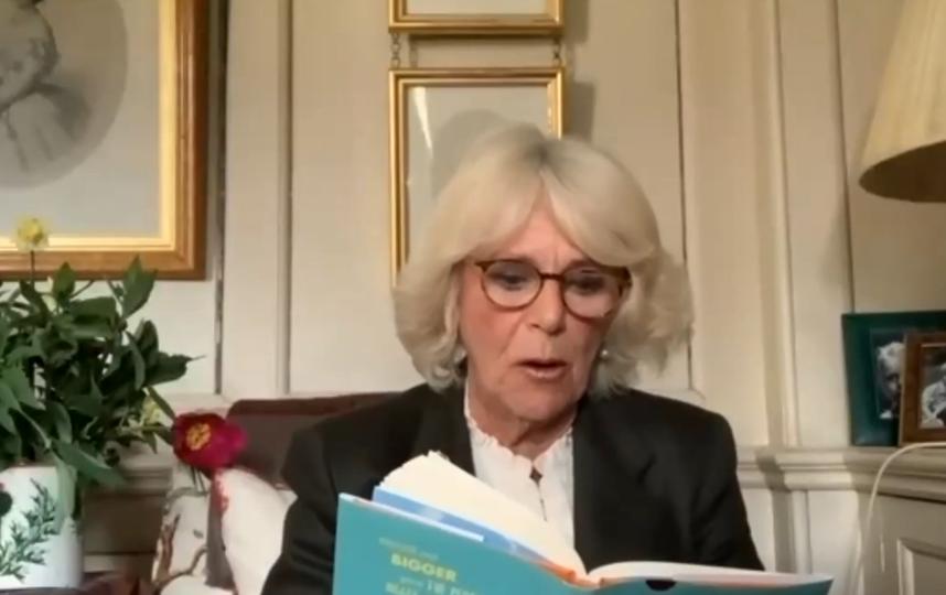 """Камилла Паркер-Боулз читает сказку. Фото  Roald Dahl HQ, """"Metro"""""""