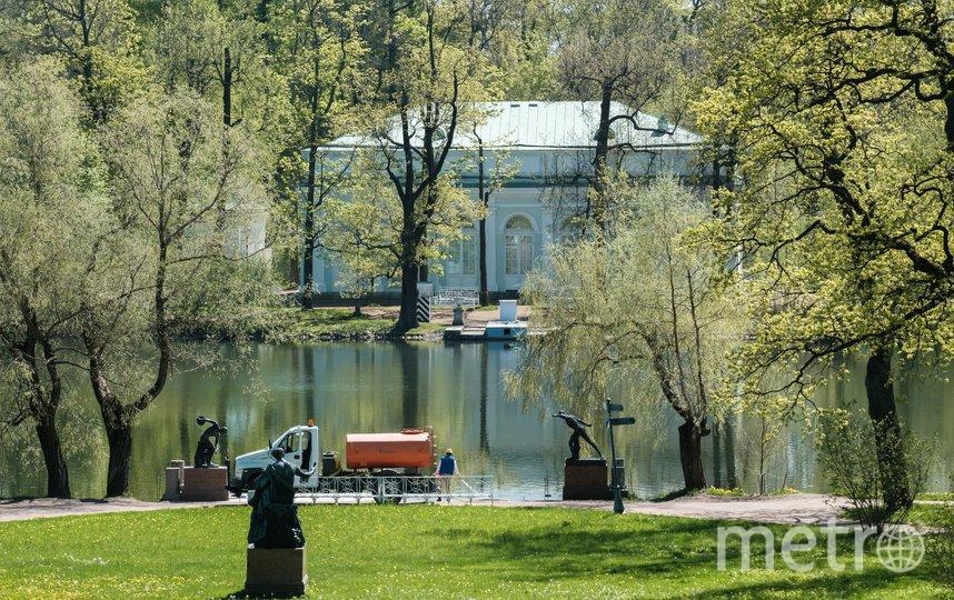 "Екатерининский парк на самоизоляции. Фото Алена Бобрович, ""Metro"""