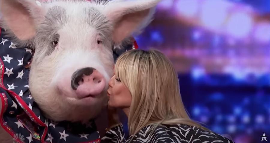 Хайди Клум целует свинью. Фото скриншот с видео, Скриншот Youtube