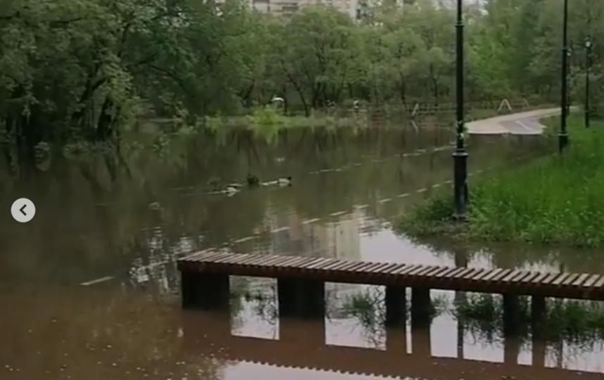 Затопило парк в Москве. Фото Instagram @shlplanetearth