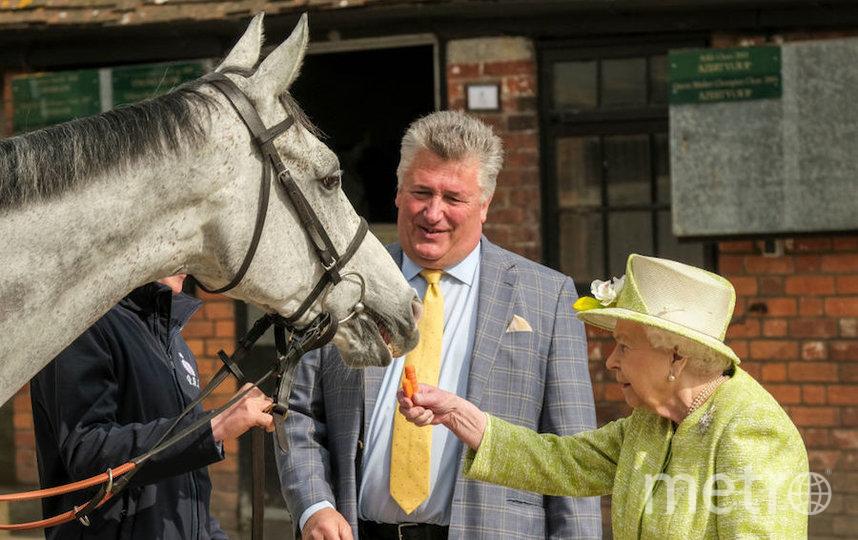 Королева Елизавета II очень любит лошадей. Фото Getty