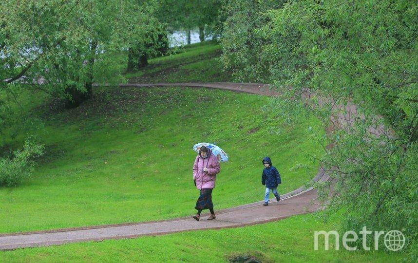 Несмотря на дождь, москвичи поспешили на прогулки. Фото Василий Кузьмичёнок