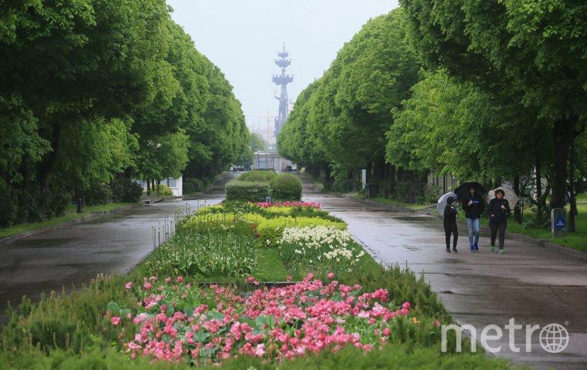 Москвичи отправились гулять на улицы. Фото Василий Кузьмичёнок