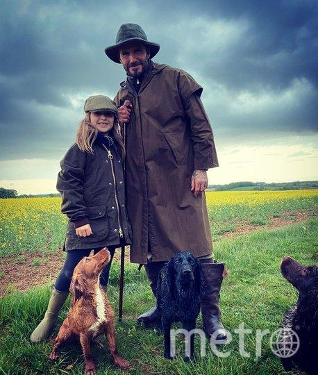"""С дочкой Харпер. Фото www.instagram.com/davidbeckham/, """"Metro"""""""