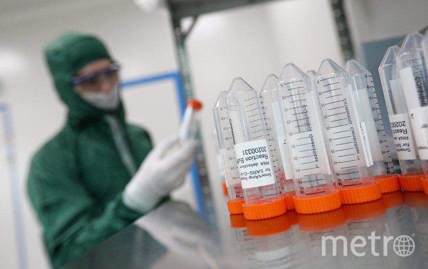 """Сейчас идут доклинические испытания новой вакцины. Фото Агентство """"Москва"""""""