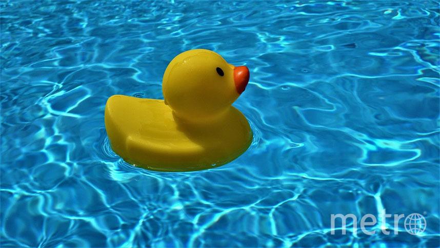 Надувные бассейны требуют более серьёзной эксплуатации. Особенно это касается воды, которая имеет привычку застаиваться и цвести. Фото Pixabay