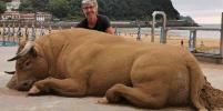 Дикие животные занимают европейские пляжи