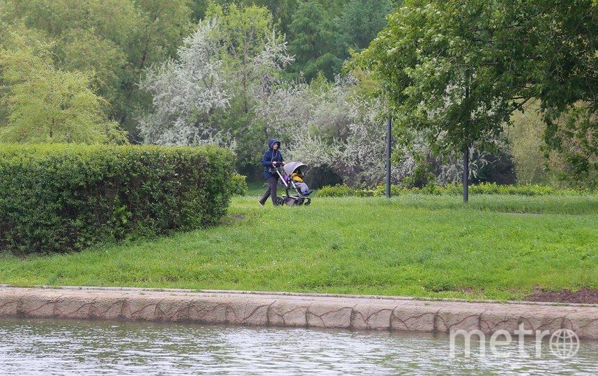 Москвичи осторожно возвращаются в парки. Фото Василий Кузьмичёнок