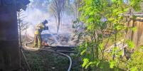 В Ленобласти горели 15 гаражей и сараев: фото