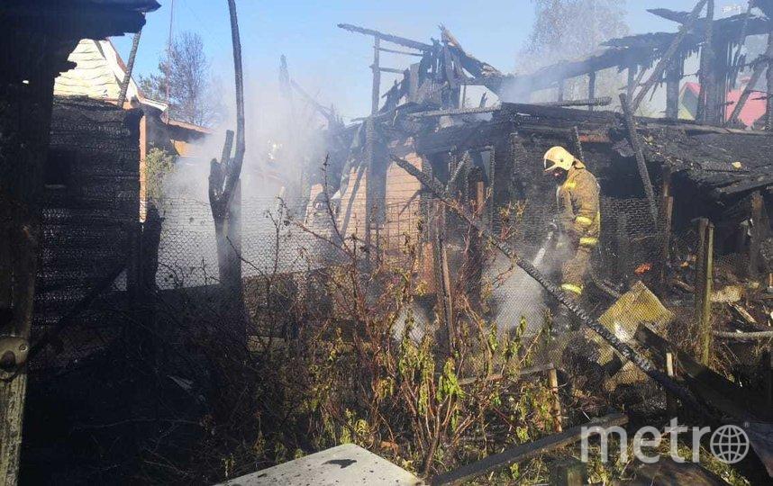 Фото с места происшествия. Фото Предоставлено пресс-службой МЧС по Ленобласти