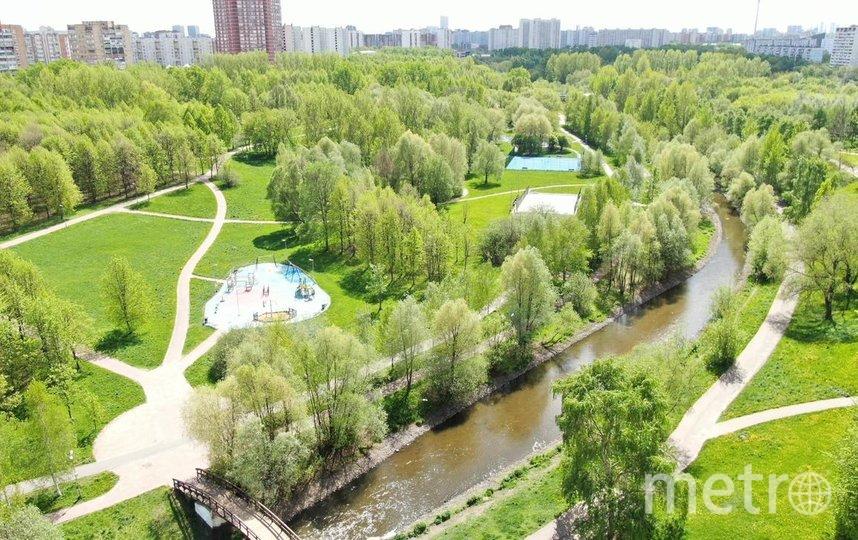"""Сейчас в столице существуют различные программы озеленения, в том числе """"Миллион деревьев"""" и акция """"Наше дерево""""."""