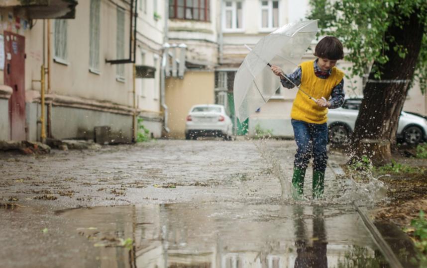 Синоптики рассказали о погоде в Москве 4 июня. Фото Pixabay