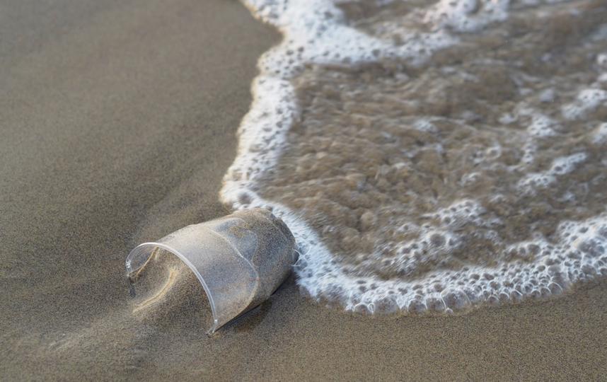 Минприроды сообщило, какие водные объекты вляются лидерами по загрязнению пластиком в России. Фото Pixabay