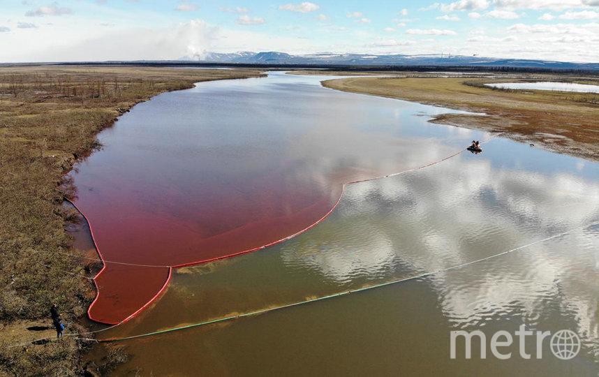 Площадь загрязнения составила более 180 тысяч кв. м. Фото AFP