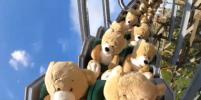 В Нидерландах плюшевые медведи прокатились на американских горках: видео