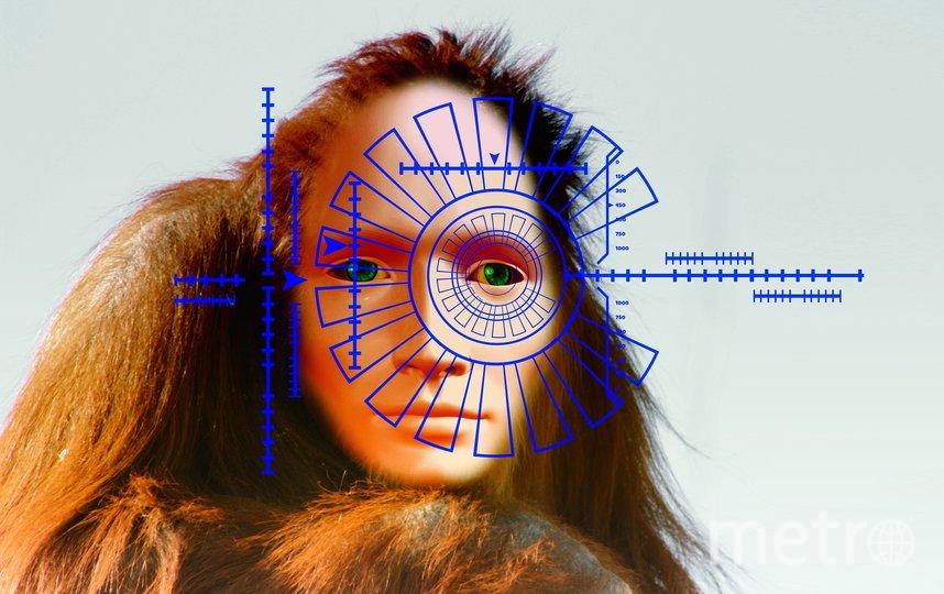 """Эволюция двигает мир вперед. Фото pixabay.com, """"Metro"""""""
