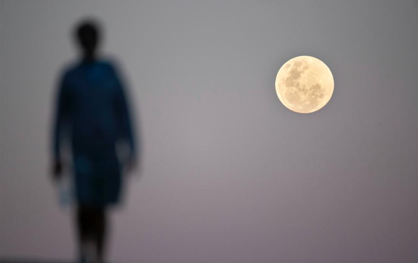 На затмение лучше не смотреть. Фото Getty, Getty