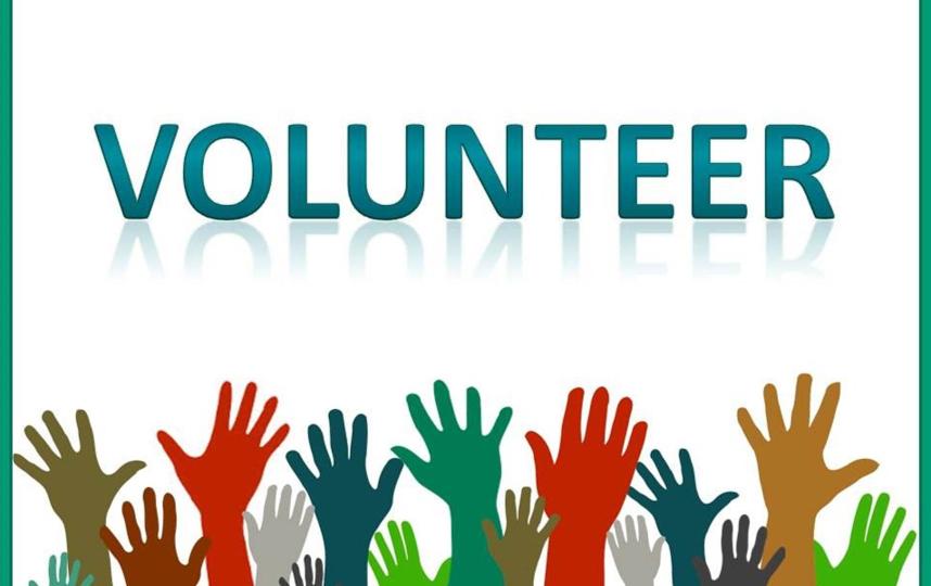 Сдать плазму могут люди от 18 до 55 лет без противопоказаний к донорству. Фото pixabay.com