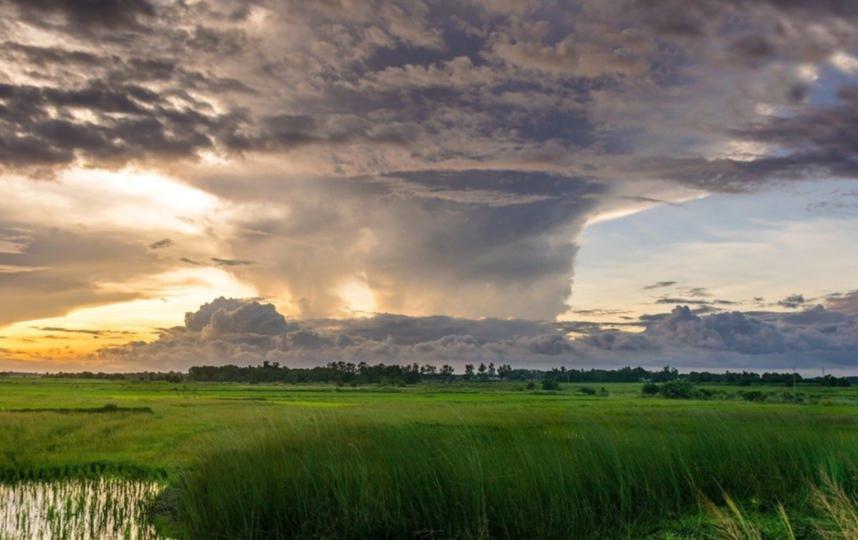 Жителей столицы и Подмосковья просят, по возможности, оставаться дома во время непогоды. Фото Pixabay