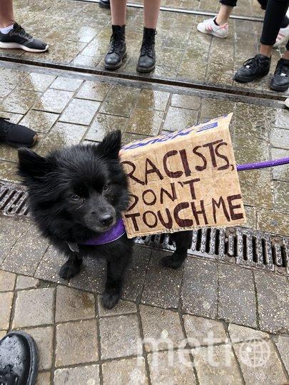 """""""Расисты, не трогайте меня"""". Фото Twitter, пользователь Jasmine Rice"""