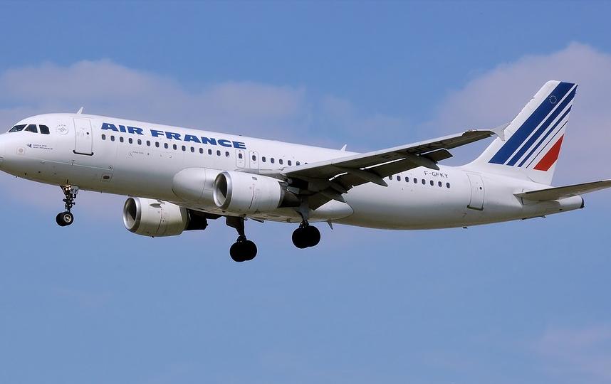 Около 7 млрд евро будет выделено для поддержки Air France. Фото pixabay.com