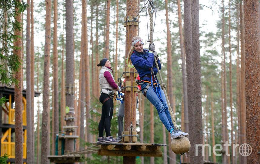Сеть парков Norway Park.