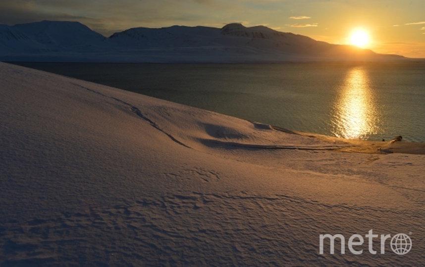 Закат на архипелаге Шпицберген. Фото РИА Новости