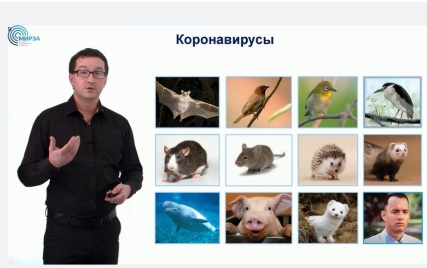 Николай Никитин. Фото скриншот Youtube, Скриншот Youtube