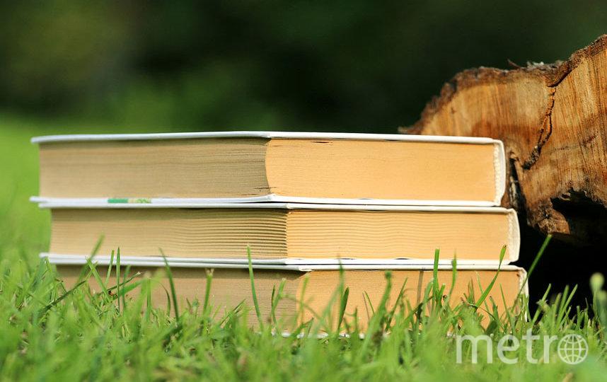 Перед вами главные книжные новинки начала лета. Фото Pixabay