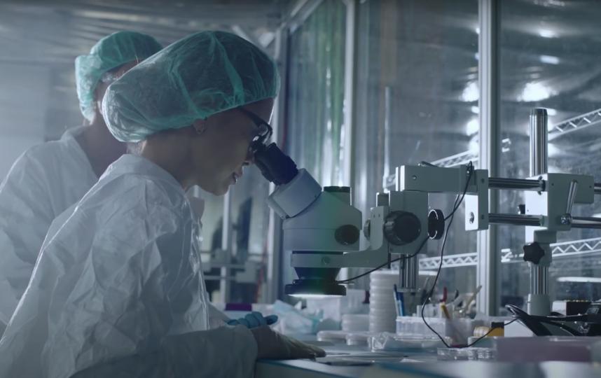 Микросхему детально разрабатывают с помощью микроскопов. Фото Скриншот презентации Neuralink, Скриншот Youtube