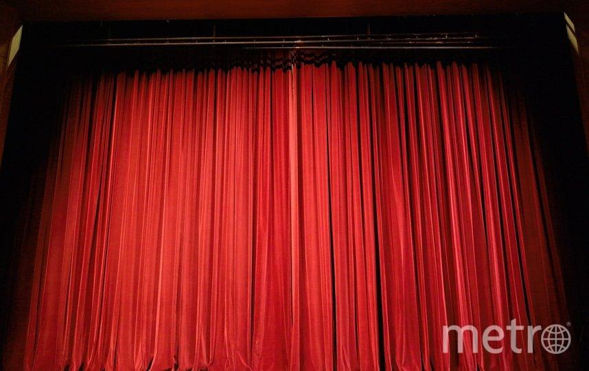 Сейчас зрительные залы пустуют из-за пандемии. Фото pixabay