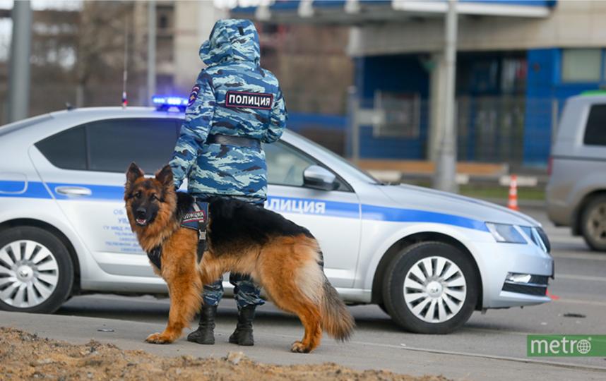 """Возле дома находятся полицейские и дежурит скорая помощь. Фото Василий Кузьмичёнок, """"Metro"""""""