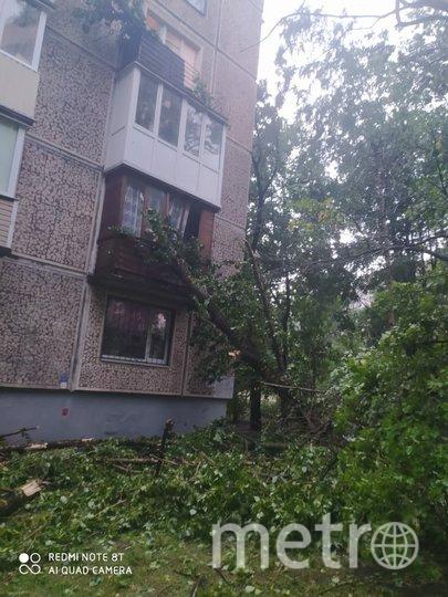 Последствия грозы в Петербурге. Фото ДТП/ЧП, vk.com