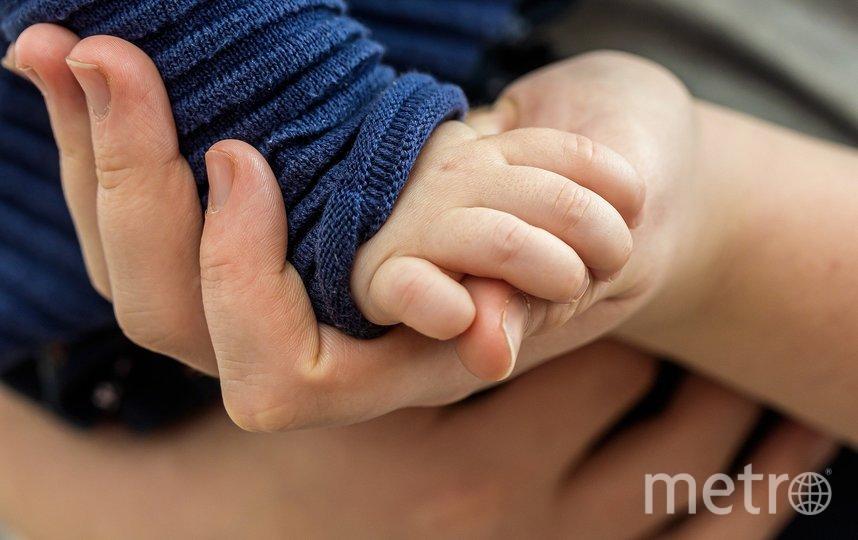 Малыши рождены, предположительно, суррогатными матерями. Фото Pixabay