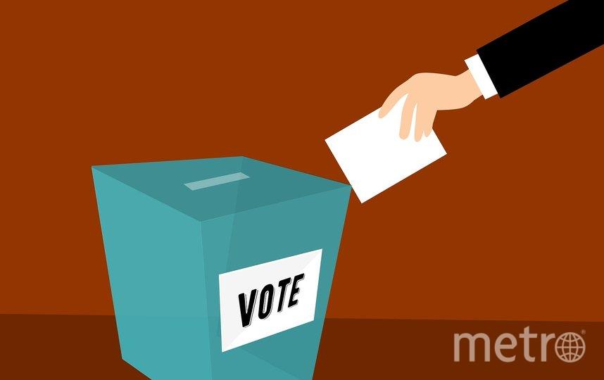 Началось дистанционное голосование по поправкам. Фото pixabay