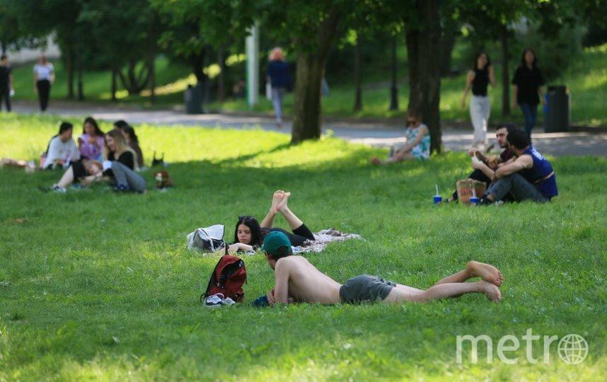 """Во второй половине лета возможны """"температурные ямы"""". Фото Василий Кузьмичёнок, """"Metro"""""""