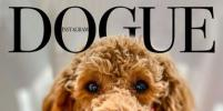 Собаки появились на обложке модного журнала