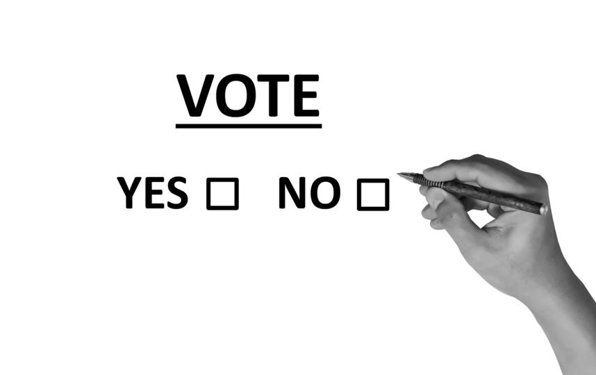 В Москве голосуют по поправкам в Конституцию РФ. Фото pixabay
