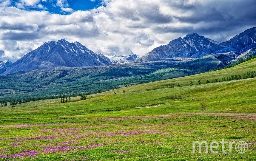 Виды на Монголию. Фото pixabay