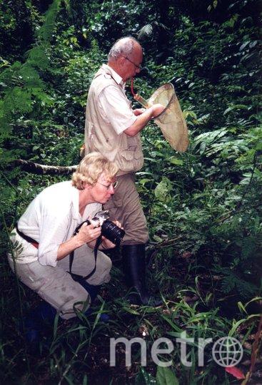 """Джулиана и её муж Эрих на биостанции Panguana, ищут насекомых. 2000 год. Фото предоставила Juliane Diller, """"Metro"""""""